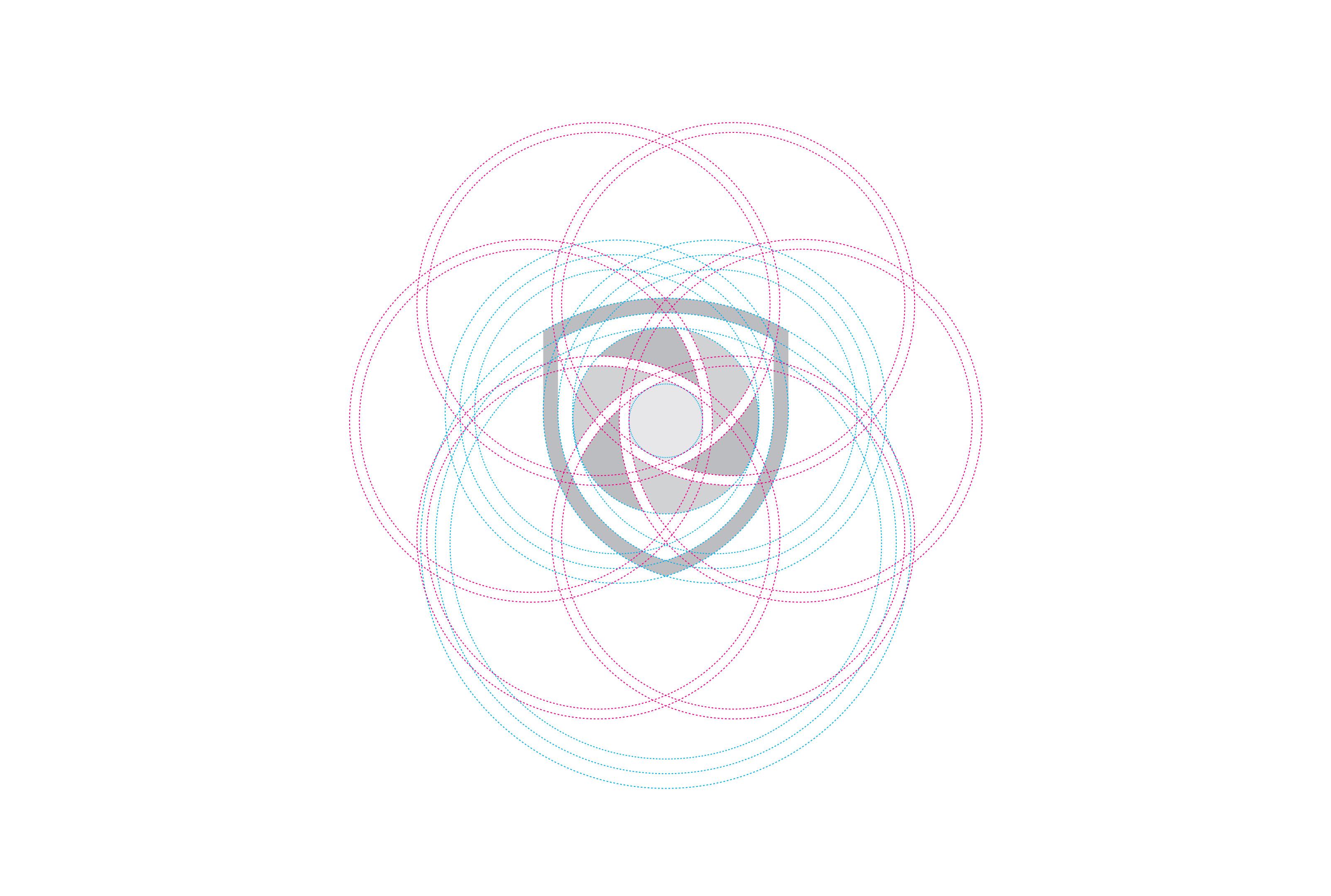 Asset Snaps - Construction Grid