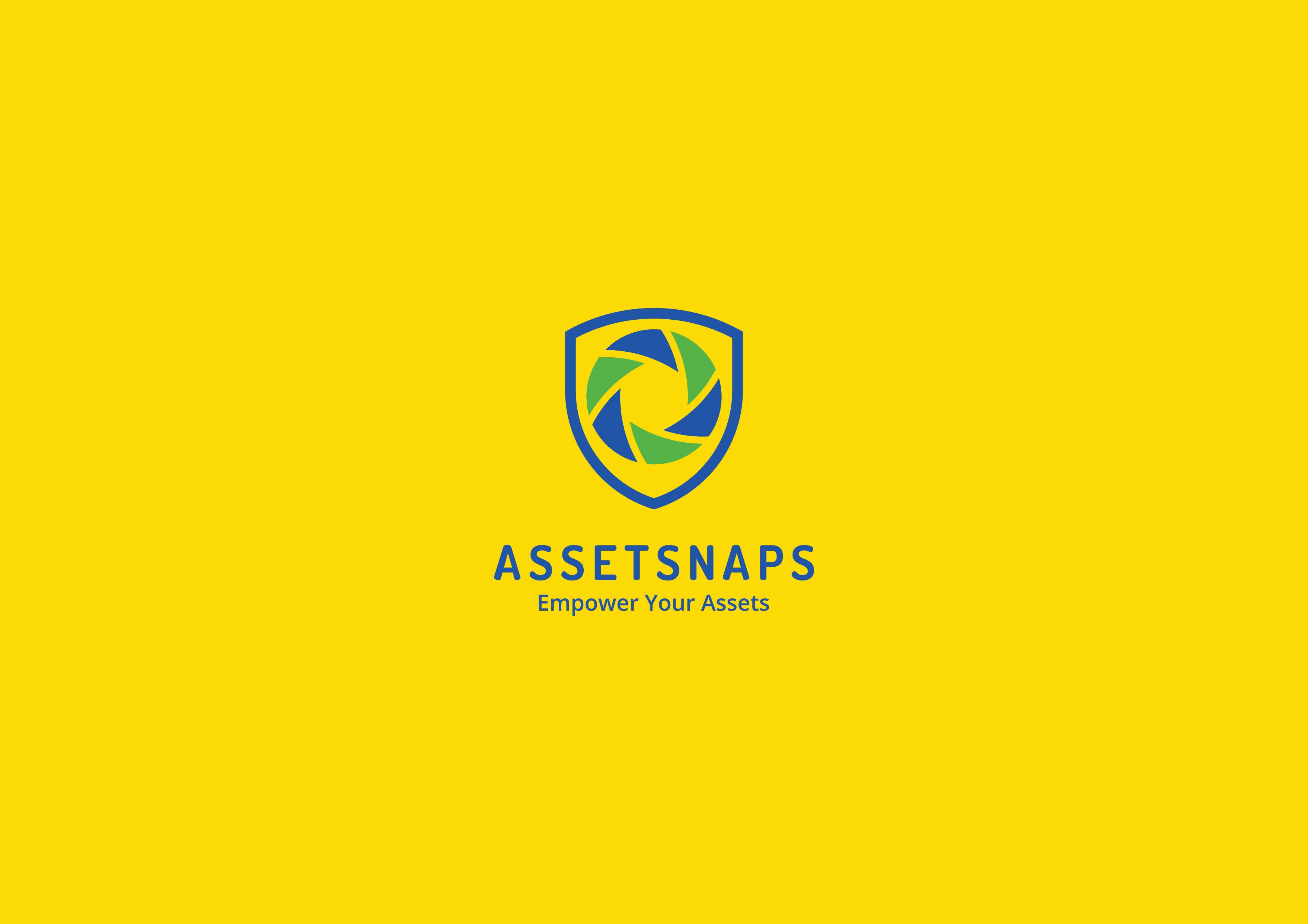 Asset Snaps